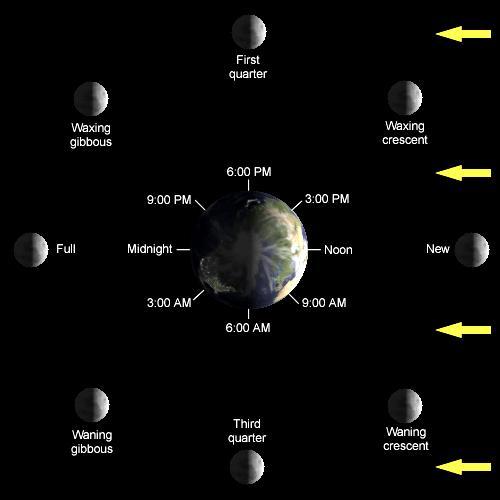 Mastering astronomy homework   answers AST       Homework I   Solutions   Stony Brook Astronomy