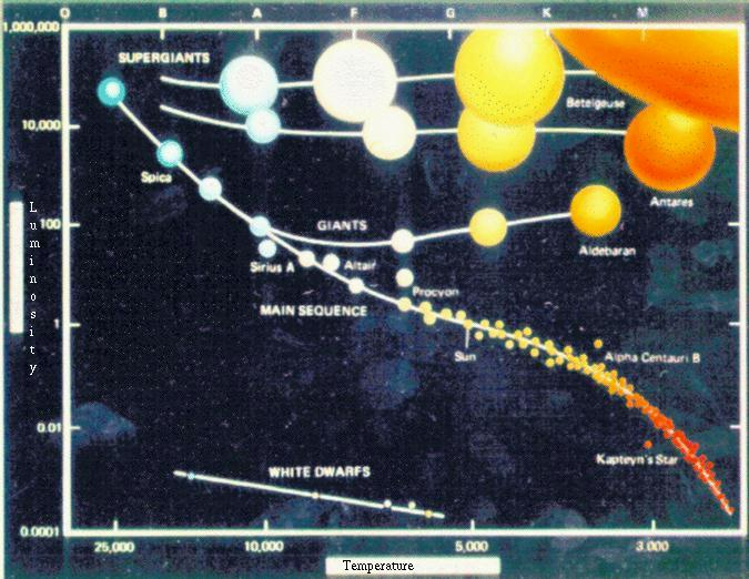 Week 7 lecture notes addition another good diagram this one in english showing both the colors and the sizes of the stars now you can see why we call them supergiants ccuart Gallery