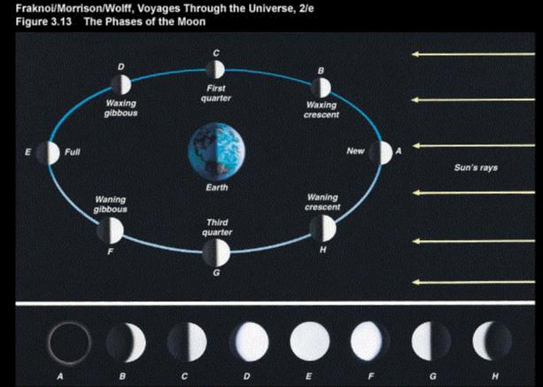 Astronomy Moon Phases (page 2) - Pics about space