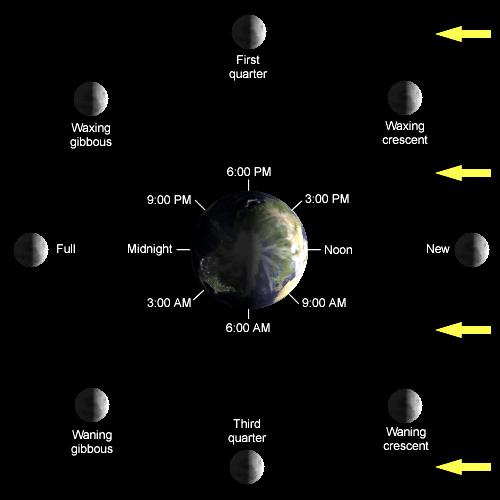 Easiest Lunar Phase Diagram to use for homework.